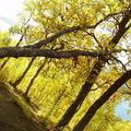13-09-08 Sortie montagne (75)