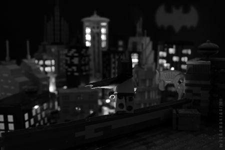 Bat_Fin