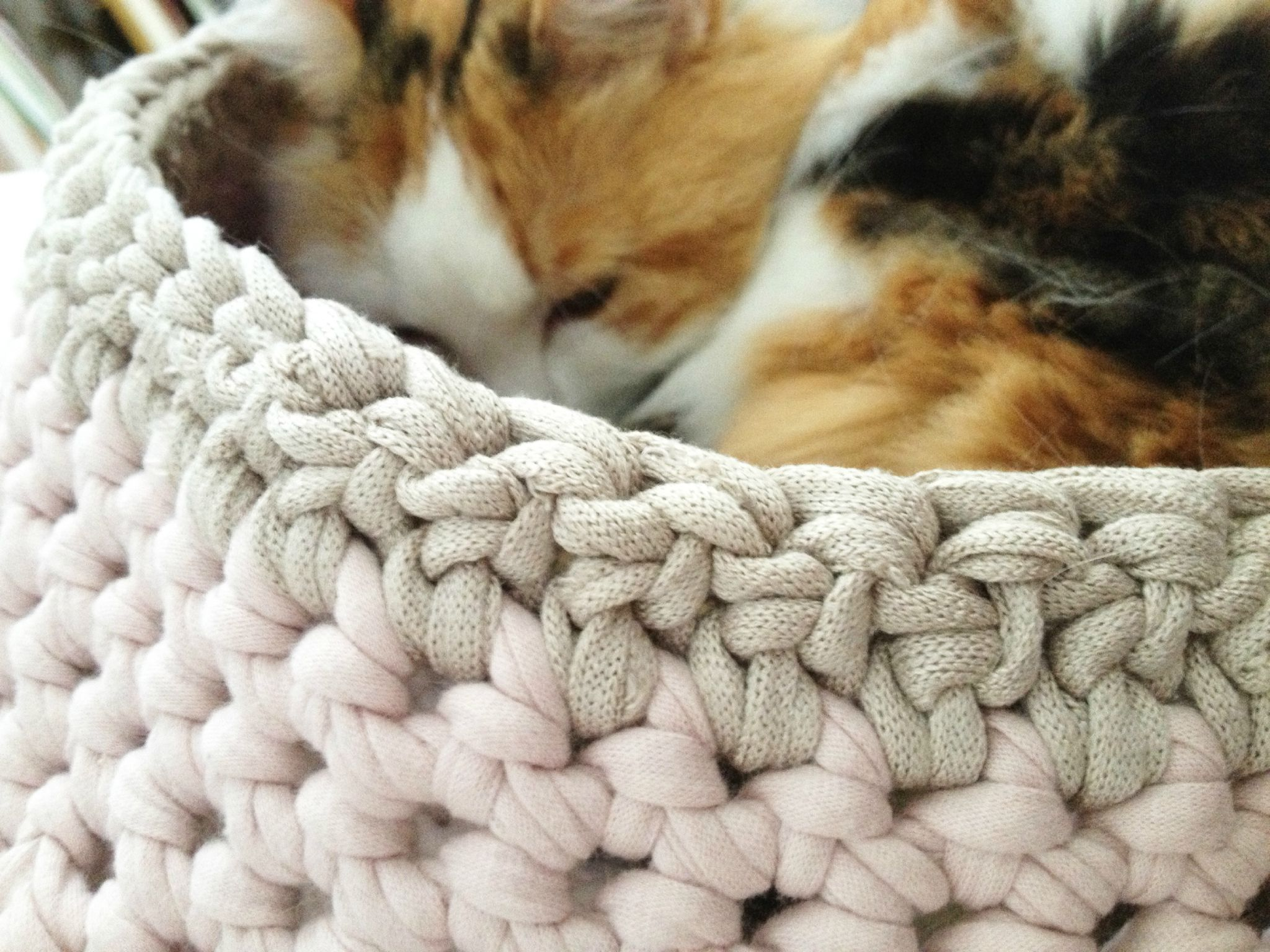 panier chat crochet