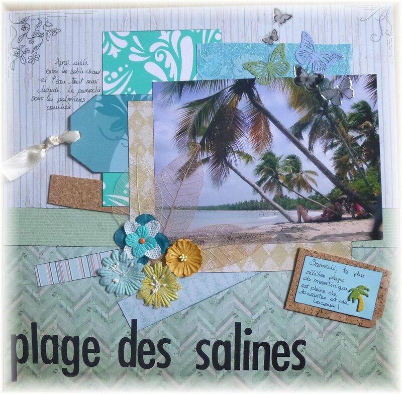 plage des salines (1)