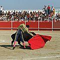 Hérault : boujan, nouveau symbole de la culture taurine