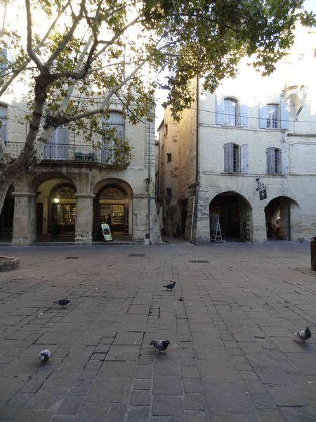 Place aux Herbes UZES (9)