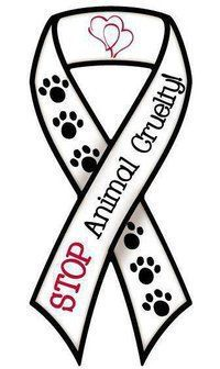 Journée soutien aux animaux martyrs : 11 Aout 55970242
