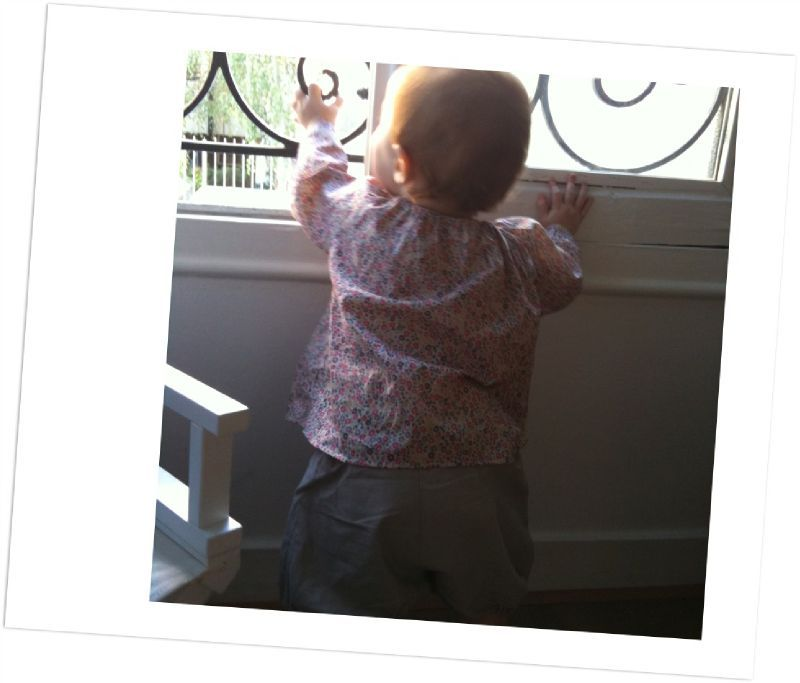 asticot à la fenêtre