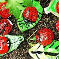 Jardins et Insectes (6/11 ans)