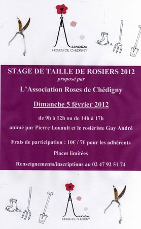 affiche stage taille 2012251