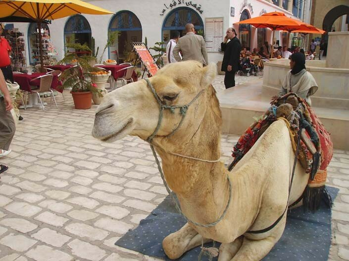 Privé de désert ! à Hammamet
