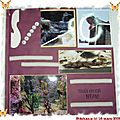 scrapbooking - sealife - 01