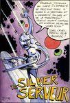 silver_serveur