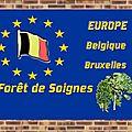 Belgique : Forêt de Soignes