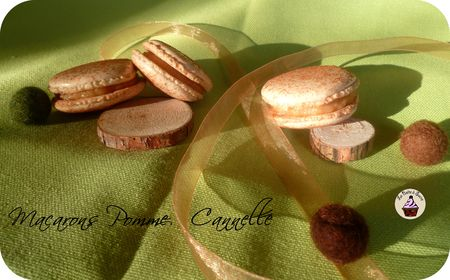 Macarons_pomme_cannelle