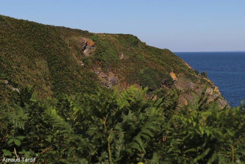 00753 Guidel - L'Ile de Groix - De la Pointe de Pen-Men au Sémaphore de Beg Melen