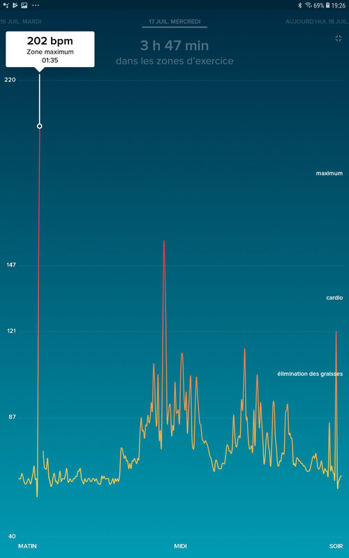 Screenshot_20190718-192652_Fitbit