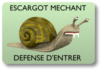 escargot_mechant_ombre