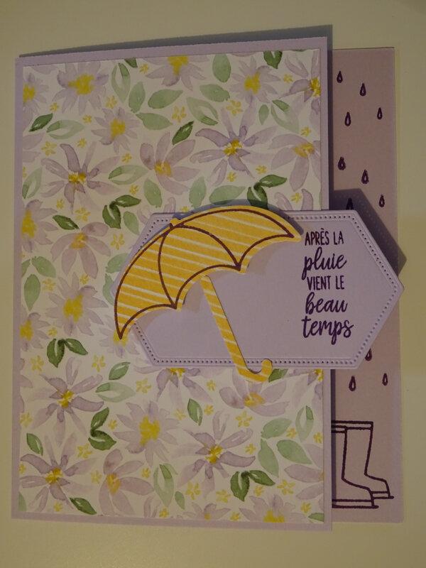 21b Carte Parapluie Après la pluie le beau temps