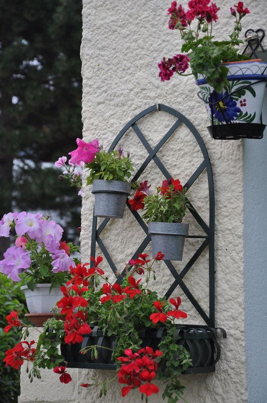jardins fleuris 0370038
