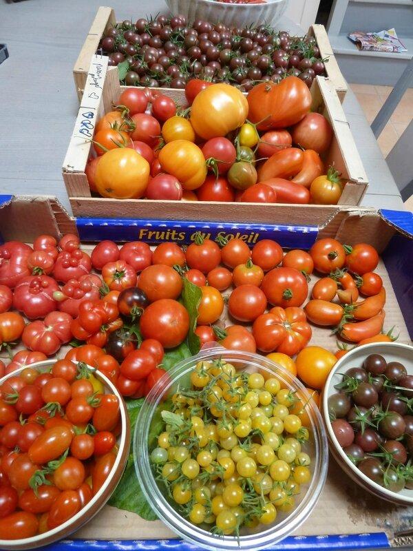 9-tomates du jour (1)