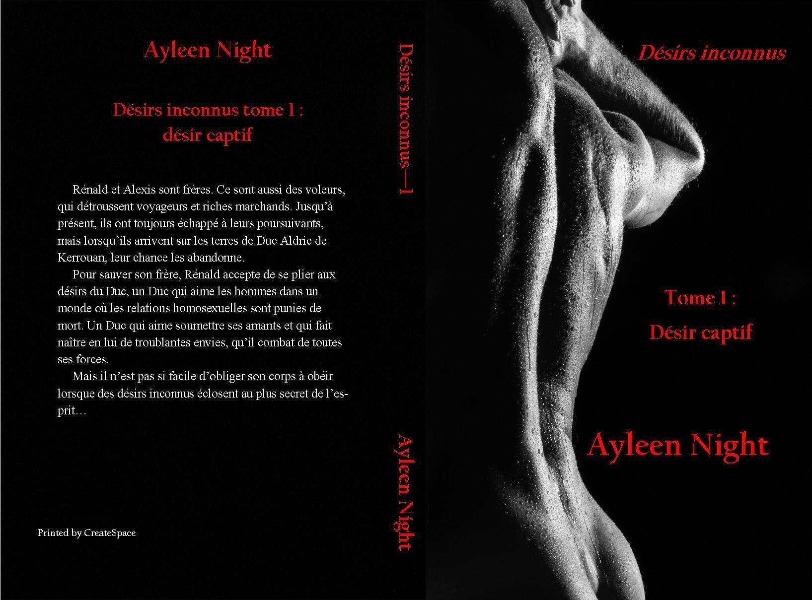 Désirs inconnus tome 1 : désir captif (Ayleen Night) : dédicace