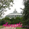 Royal greenhouses of laeken,brussels