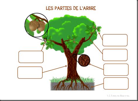 Windows-Live-Writer/Projet-Mon-ami-larbre_90D5/image_thumb_8