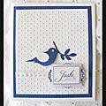 Carte bleu et blanche