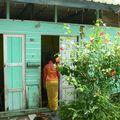 Kampong Buangkok: dernier village traditionnel de Singapour: bientôt rasé!