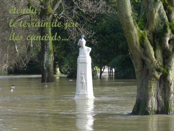 haïku image inondation
