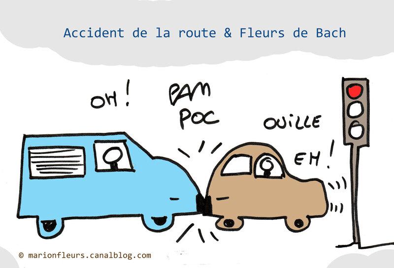accident_route_fleurs_de_bach_marionfleurs