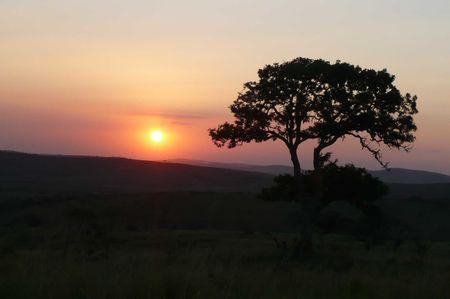 hluhluwe_sunset