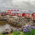 Les îles Lofoten dans la brume Les rorbuers(6)