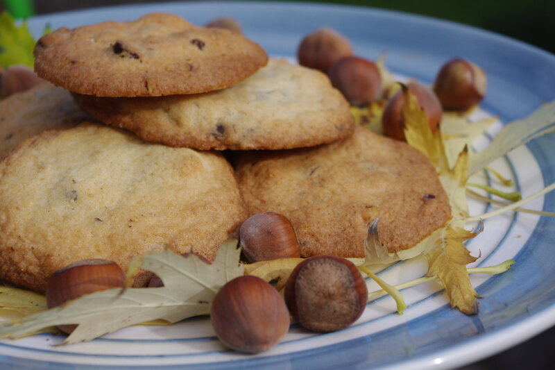 Cookies_choco_noisettes_farine_riz_2013__9_