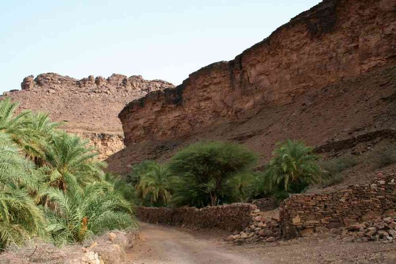 Seckasysteme-Mauritaniemauritania%202007%20055_jpg_rs
