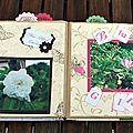 Quelques roses (22) copie
