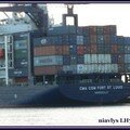 Cma Cgm Fort St Louis 5