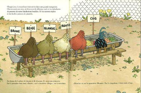poules-coq1