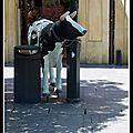 vache espagnole