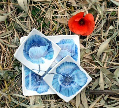 coquelicots bleus2