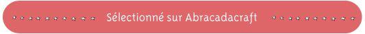 bande_pour article_blog-10(1) copier