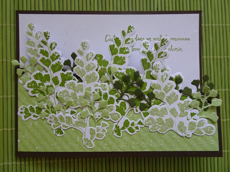 28b Carte Découpe partielle Fougère capillaire