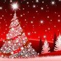 Que la chaleur, la bienveillance et l'amour de noël soient avec vous tous !!!