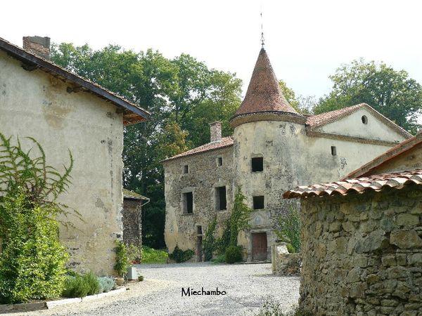 21 MAZEL Auvergne