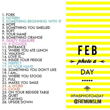 Fat Mum Slim February 2013