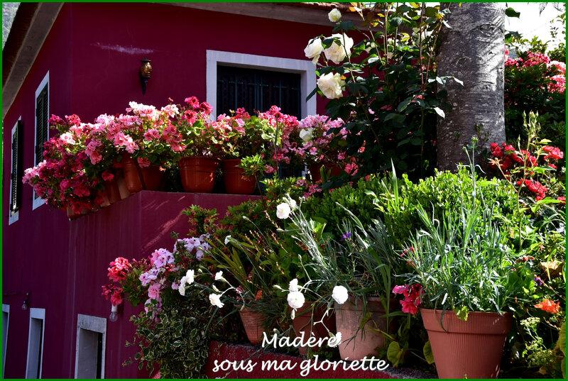 maison fleurie1