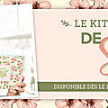 Le kit paper pumpkin arrive