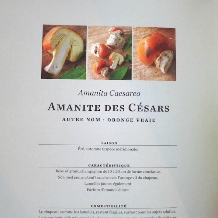 © Editions de La Martinière (3)