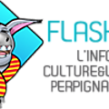 logo-complet2-100flash