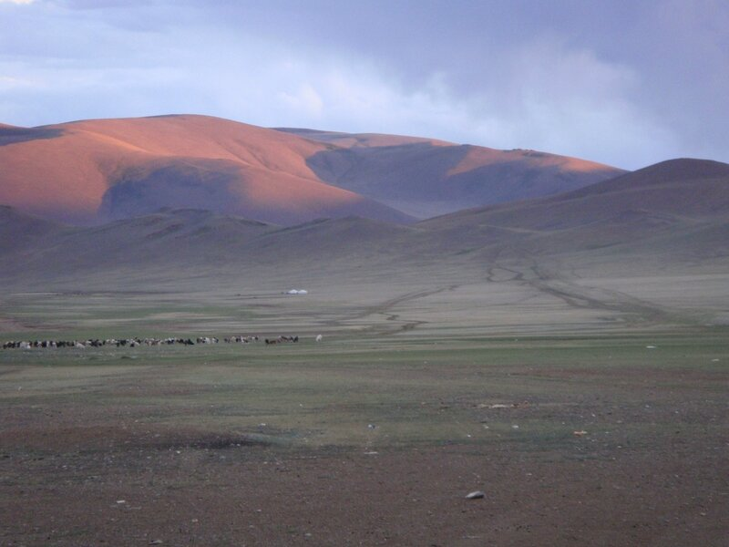 Mongolie 256