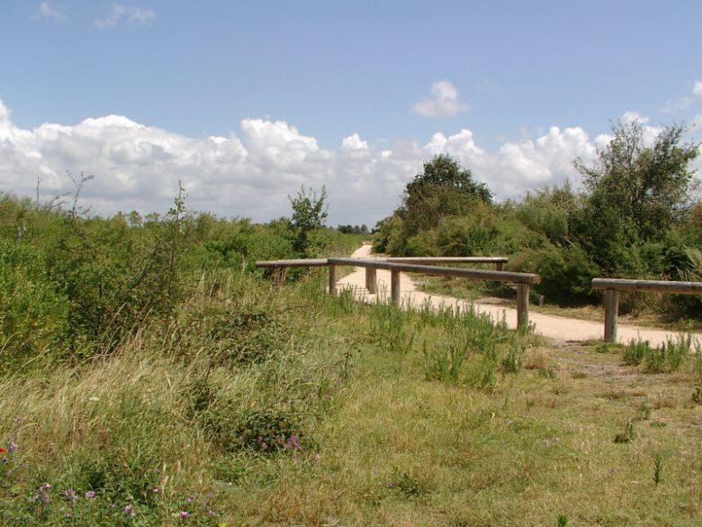 Sentier-du-Littoral-2-780x585