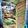 Echelle Stratigraphique