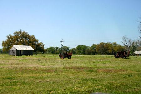 Louisiana_Oak_Alley_2